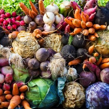 5 зимних блюд из сезонных продуктов
