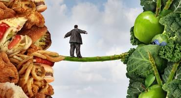 Необычные рационы питания
