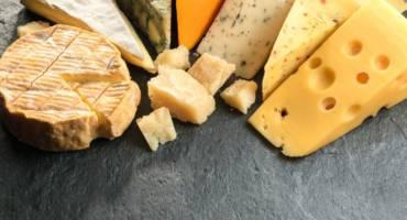 Путеводитель в мир сыров