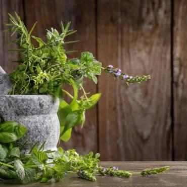 История ароматных трав